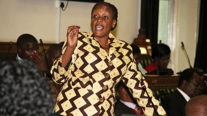 You are currently viewing ED appoints Misihairabwi-Mushonga as the Zim Ambassador to Sweden